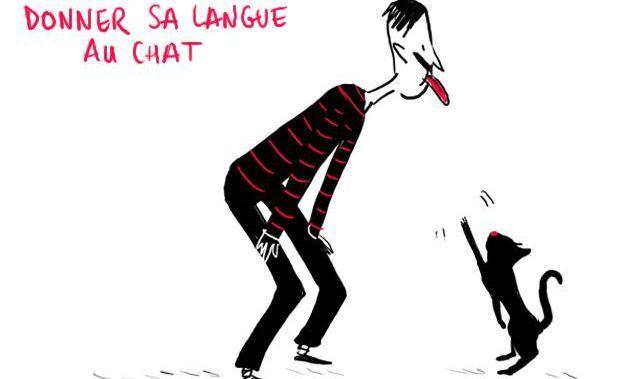 تعابير فرنسية متداولة